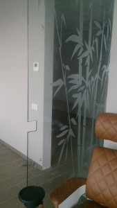 стеклянная маятниковая дверь вырезы