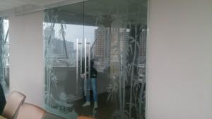 стеклянные раздвижные двери с синхронизацией